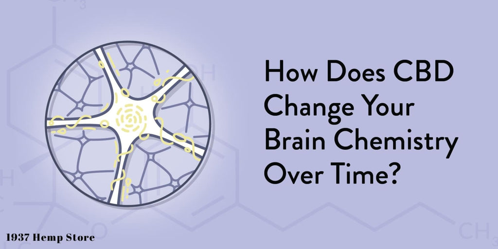 How Does CBD Change Your Brain Chemistry Over Time?
