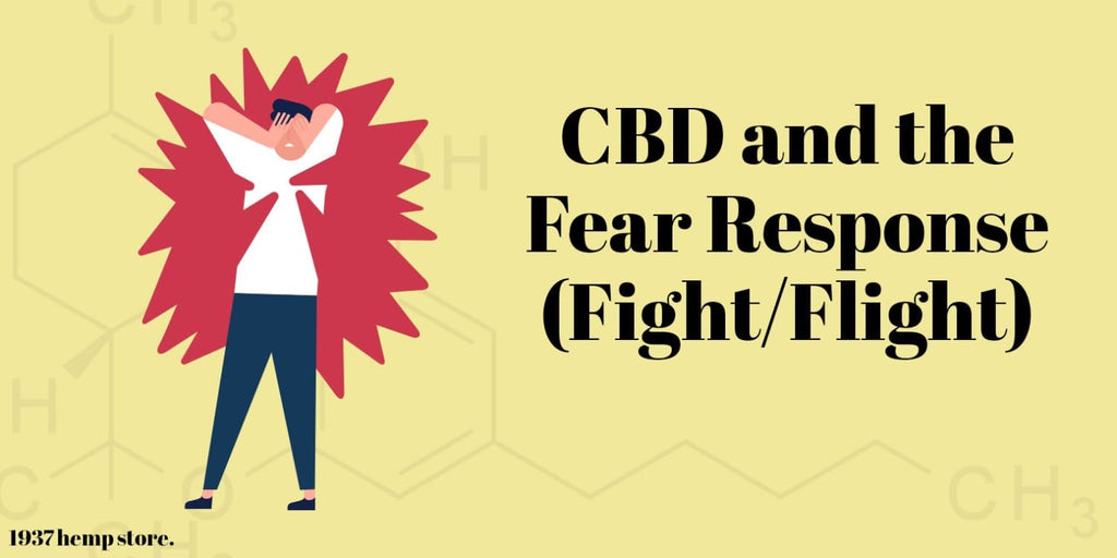 How to Balance Your Fight-or-Flight Response With CBD