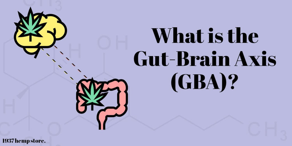 What is the Gut Brain Axis (GBA)