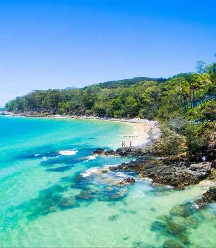 Noosa by Lisa Greenberg