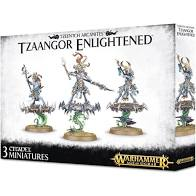 Warhammer AOS Tzaangor Enlightened