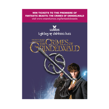 Load image into Gallery viewer, Exclusive Newt Scamander Pin Badge