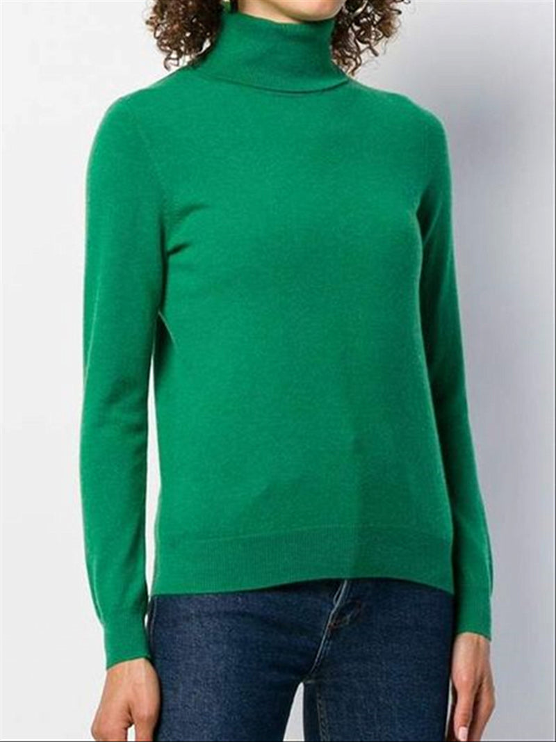 Autumn Winter Casual Basic Daily Warm Turtleneck Long Sleeve Sweater