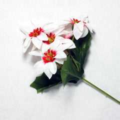 White Poinsettia Silk Flowers 2''