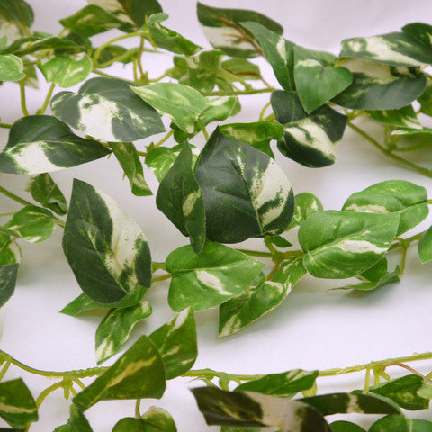 Silk Green Pothos Wired Garlands 6' 1pc