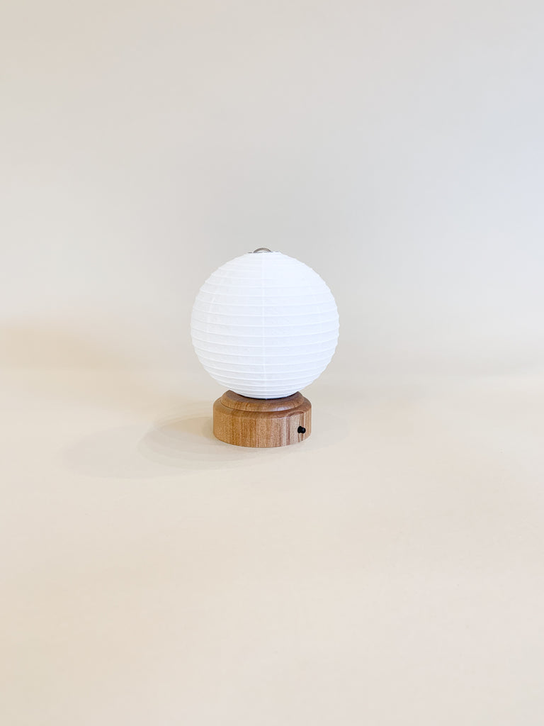 Ameico Washi Paper Fruit Lantern LED Light