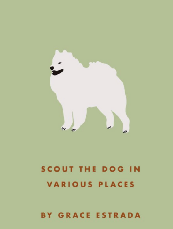 Scout the dog in various places