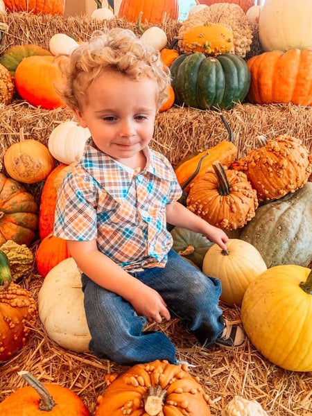 Field of Pumpkins Plaid Button Up