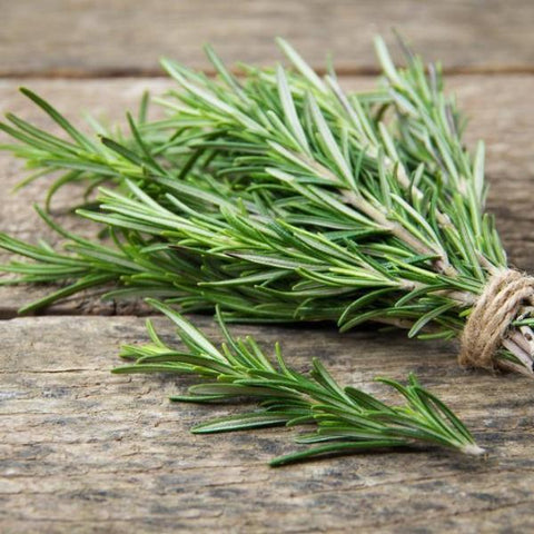 Rosemary Fused Olive Oil
