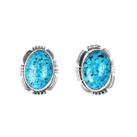 Blue Kingman Web Turquoise Post Earrings