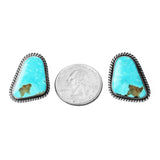 Freeform Blue Kingman Turquoise Post Earrings