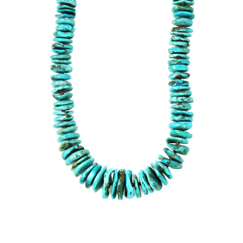 Royal Beauty Turquoise Long Necklace