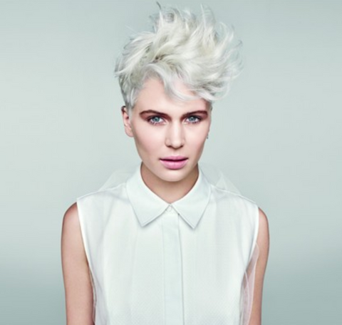 paul mitchell forever blonde nordic hair house