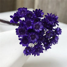 Load image into Gallery viewer, 30PCS  Dried Flower Mini Daisy Bouquet
