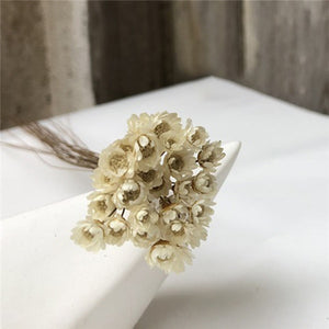 30PCS  Dried Flower Mini Daisy Bouquet