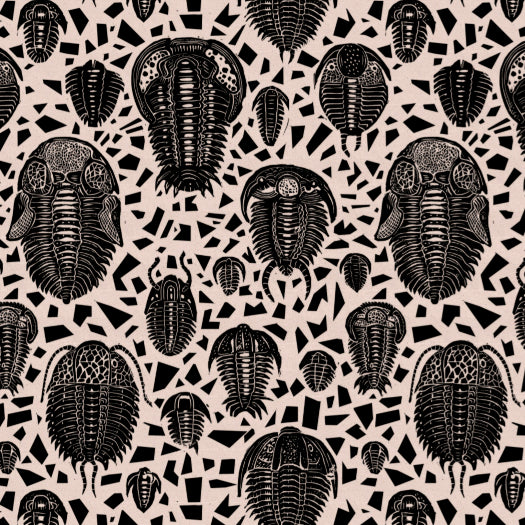 Trilobites fabric black - £50p/m