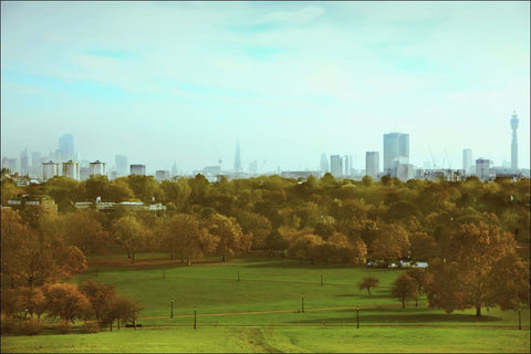 From Primrose Hill Giclée