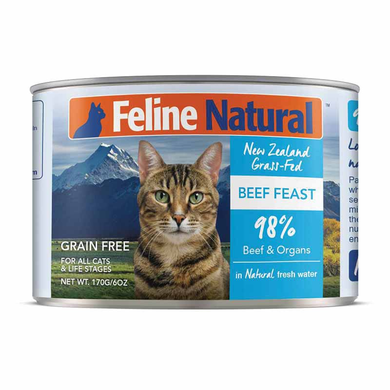 Feline Natural - Beef Feast Can
