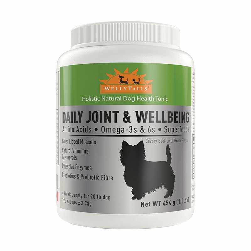 Welly Tails - Daily Joint & Wellbeing Small Dog