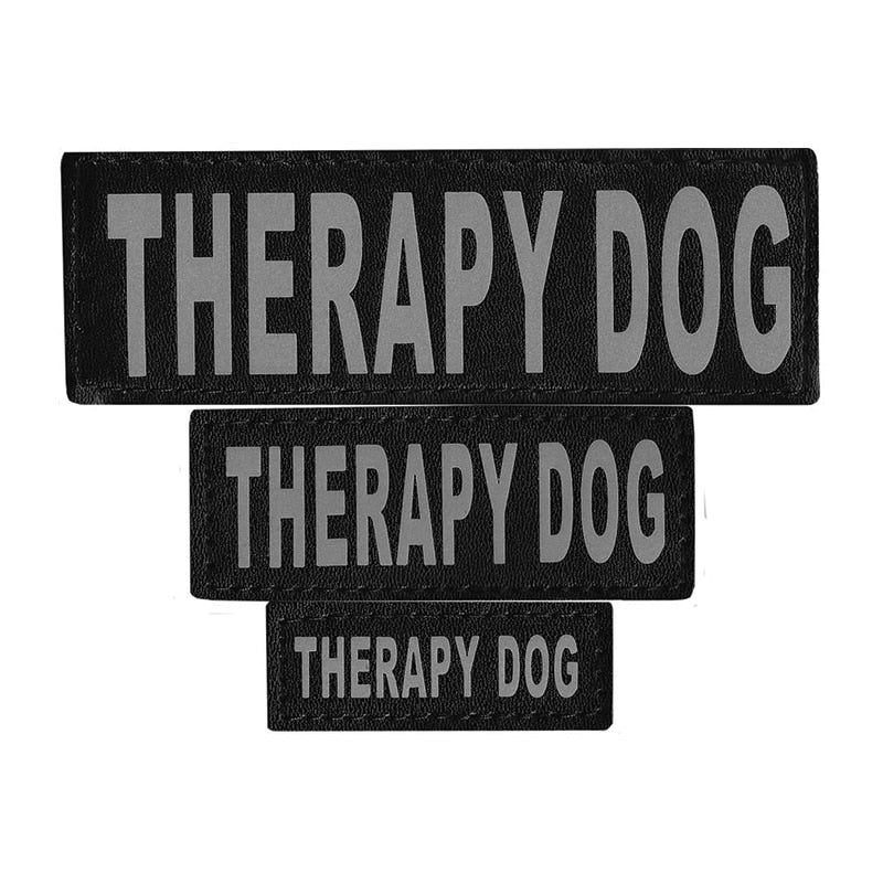 DOGLINE - Therapy Dog Patch