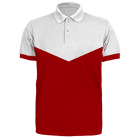 Custom Polo Shirt (PS22)