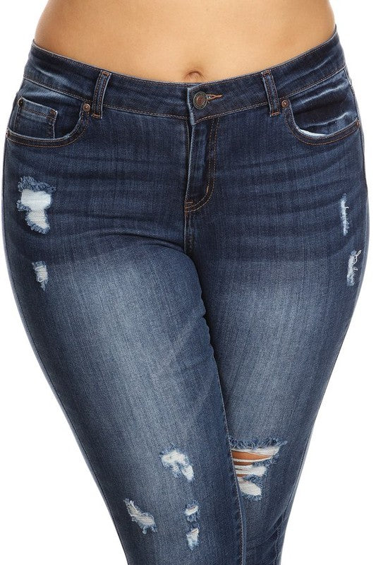Plus Stylee Mid Rise Skinny Jeans