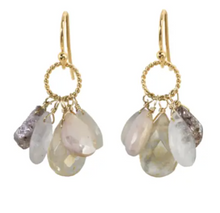 Load image into Gallery viewer, Semi Precious Cluster Earring