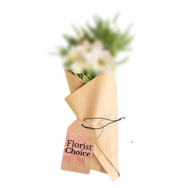 Florist Choice (No Vase)