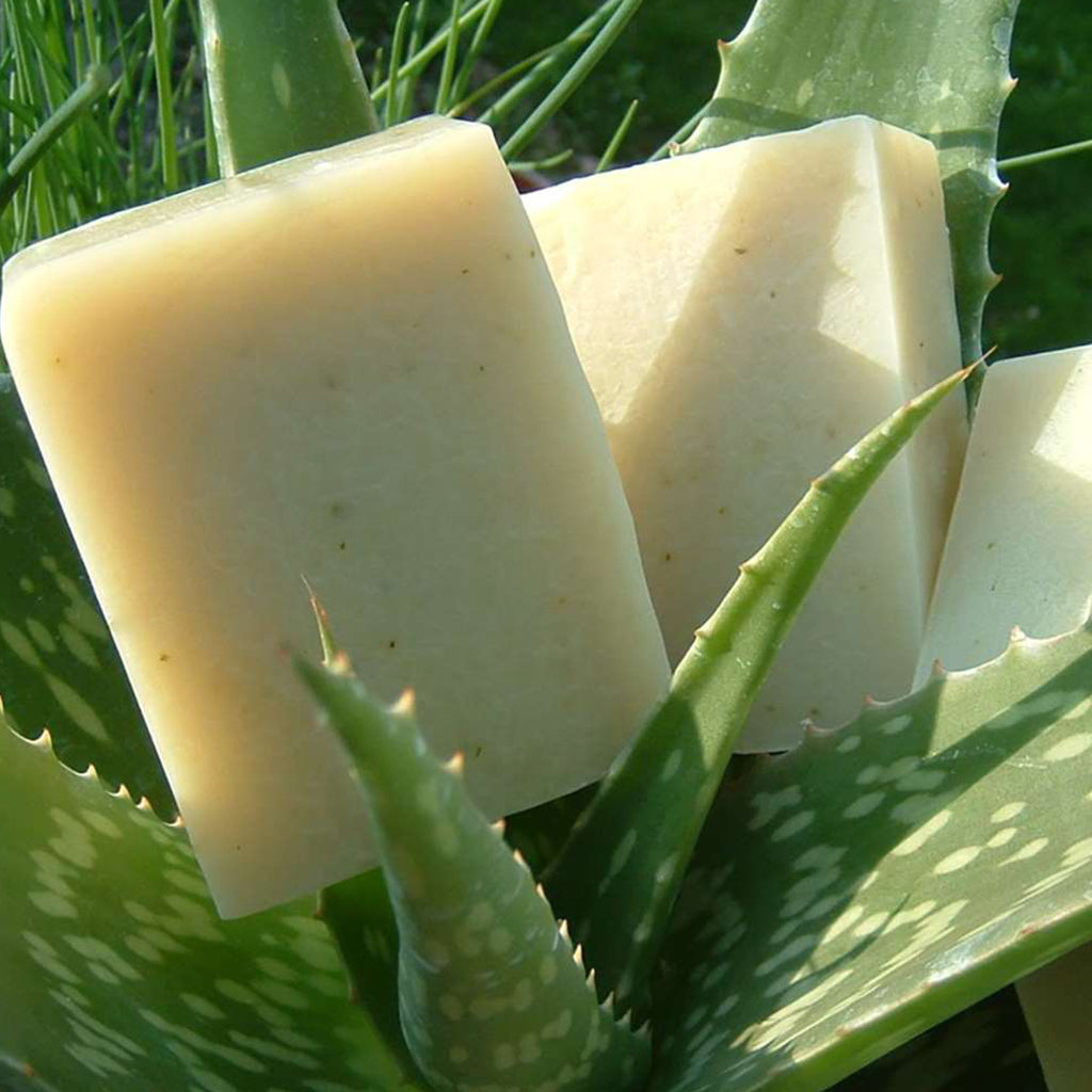 Vegan Aloe Soap