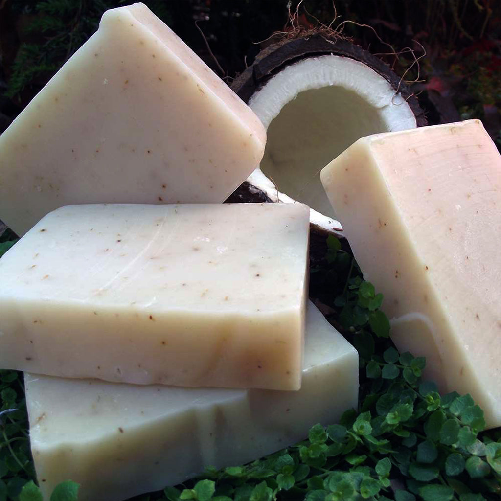 Vegan Coconut Shea Face + Body Soap Bar