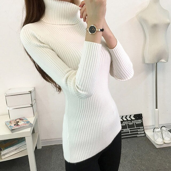 Thick Turtleneck Warm Women Sweater Autumn Winter Knitted Femme Pull High Elasticity Soft Female Pullovers Sweater Bottoming Top