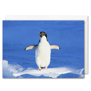 Custom Christmas Card For Business Arctic Penguin