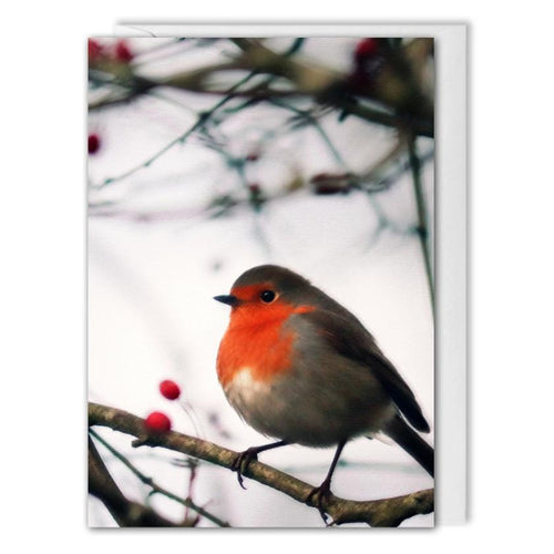 Custom Business Christmas Card - Red Robin