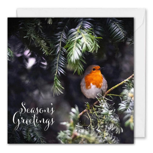 Custom Corporate Christmas Card Robin