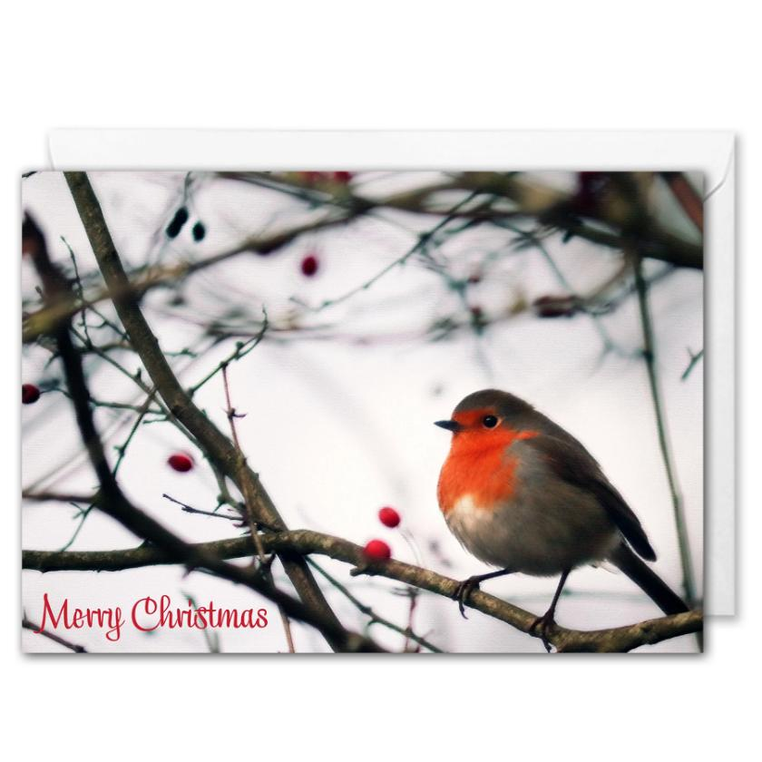 Custom Logo Business Christmas Card - Red Robin