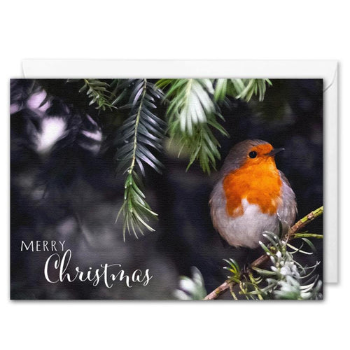 Merry Christmas Card For Business - Red Robin