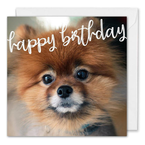 Cute Dog Birthday Card For Business