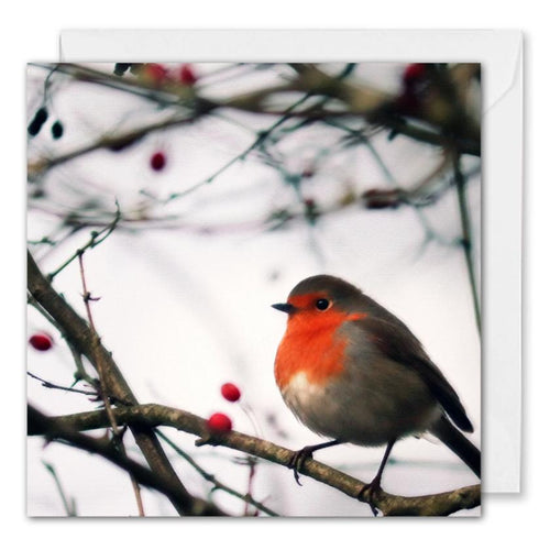 Personalised Corporate Christmas Card - Red Robin