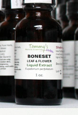 BONESET LEAF & FLOWER LIQUID EXTRACT