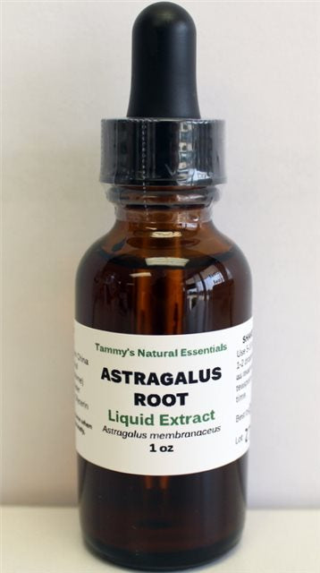 ASTRAGALUS (ROOT) Liquid Extract