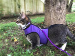 Kitty Holster Cat Harness (Made in USA)
