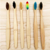 Single Bamboo Toothbrush in Blue (1351328235567)