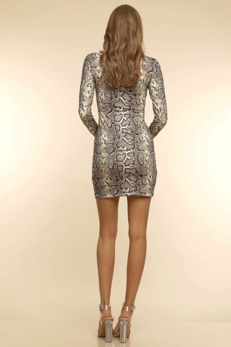 Sasha Bodycon Dress