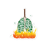 The Amazon on Fire Stickers