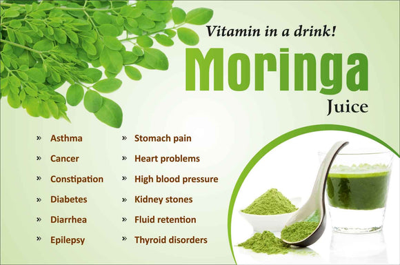 How moringa acts as an immune booster.