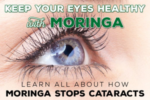 Moringa for Eye Health – Studies Show Moringa Fights Cataract Development