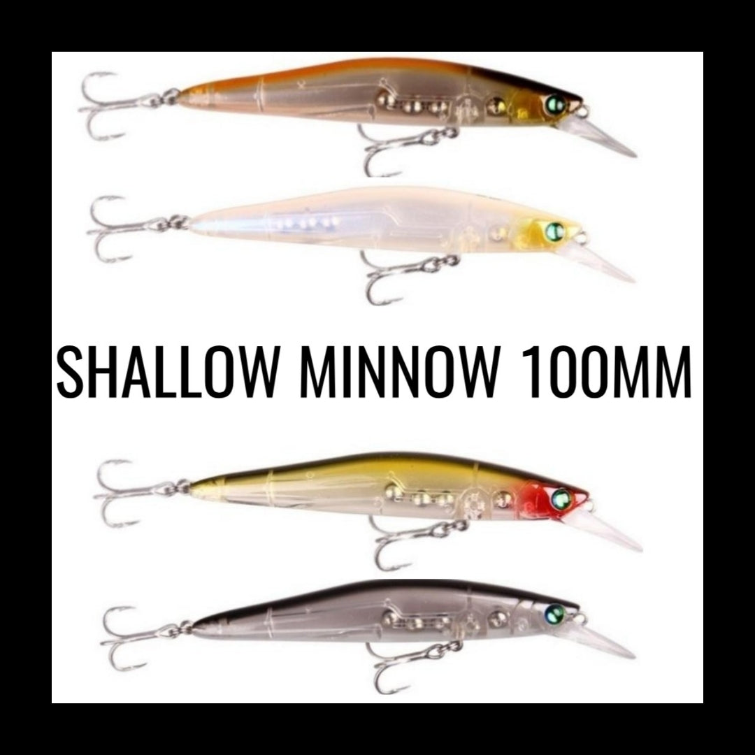 Shallow Minnow 100mm