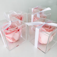 Load image into Gallery viewer, Lasting Rose Acrylic Box - Blush Pink