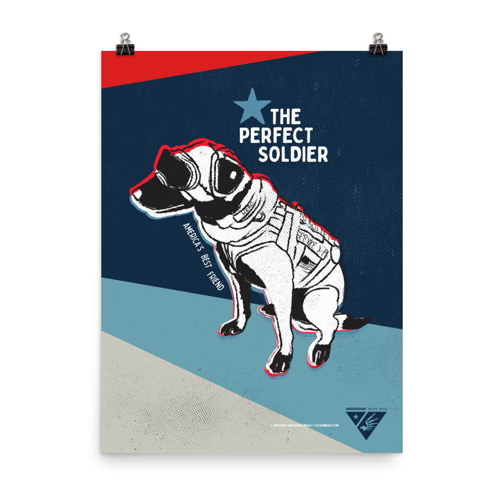 "18""x24"" Perfect Soldier Poster"