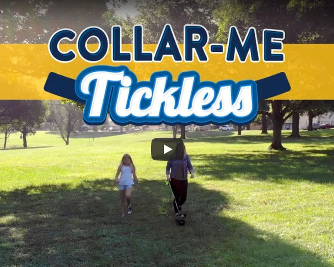 Collar-Me Tickless Video